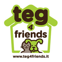 teg-4-friends